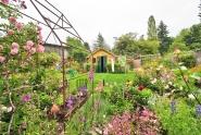 Robinson Back Garden-1